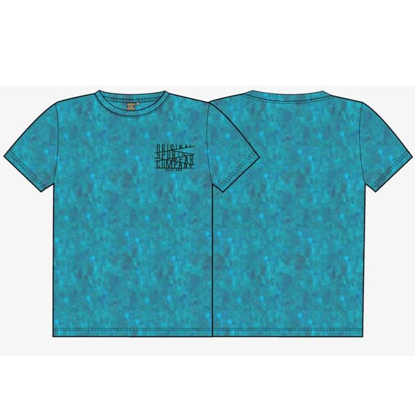 ICEPEAK - PRYS Shirt Herren T-Shirt Baumwolle - blau