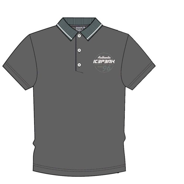 Icepeak - Poloshirt 2019 - Herren Polo-Shirt - grau