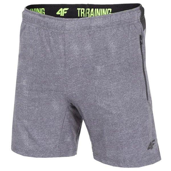4F - TRAINING - Herrn Stretch Sportshort - grau